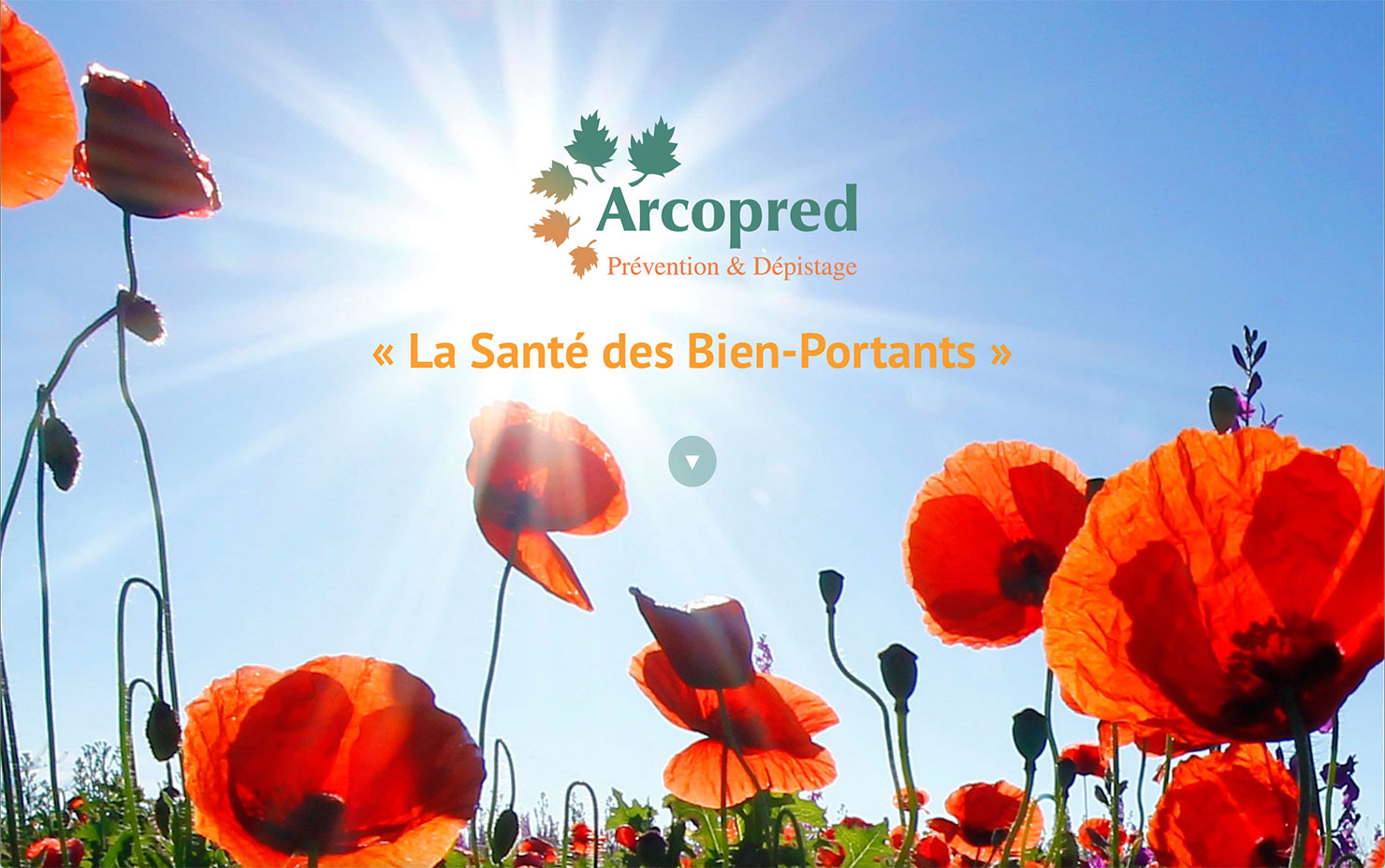 Webdesign, Montpellier, Site web de l'association Arcopred